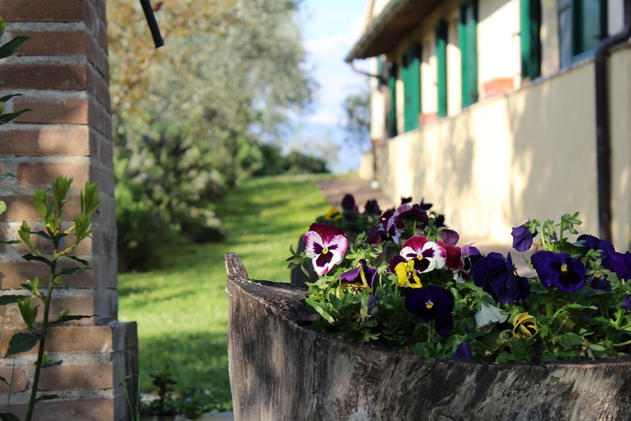 Appartamenti panoramici in agriturismo in Umbria